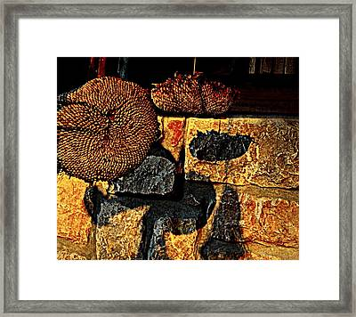 Drying Out Framed Print by Chris Berry