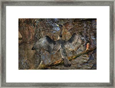 Drying Time Framed Print by Marty Koch