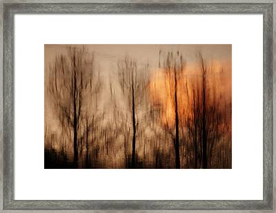 Framed Print featuring the photograph Drying Wet by Lorenzo Cassina