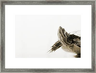 Drying Framed Print by Yevgeni Kacnelson