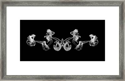 Duality Suspended Liquids Black And White Framed Print by Andy Gimino