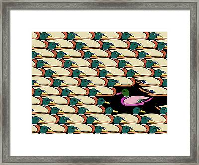Duck Against The Flow Framed Print