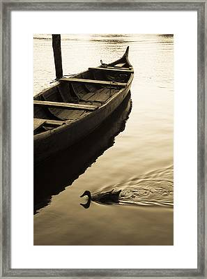 Duck And Boat Framed Print