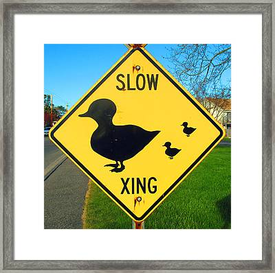Duck Crossing Sign Framed Print