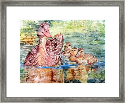 Duck Family Framed Print
