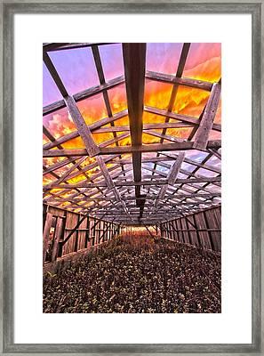 Duck Farm Skeleton Skylight Framed Print