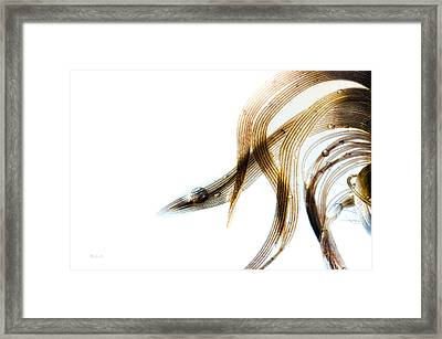 Duck Feather And Water Drops Framed Print
