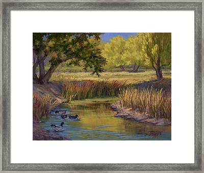 Duck Pond Framed Print by Jane Thorpe