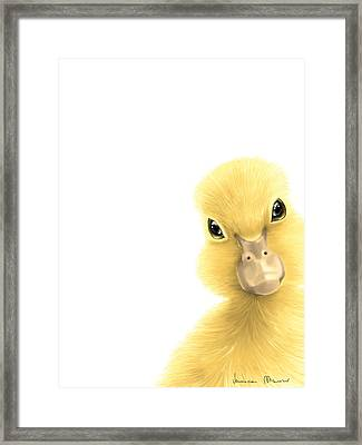 Duck Framed Print by Veronica Minozzi