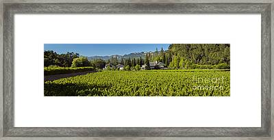 Duckhorn Vineyard Framed Print by Jon Neidert