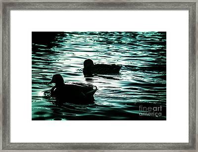 Duckies Framed Print