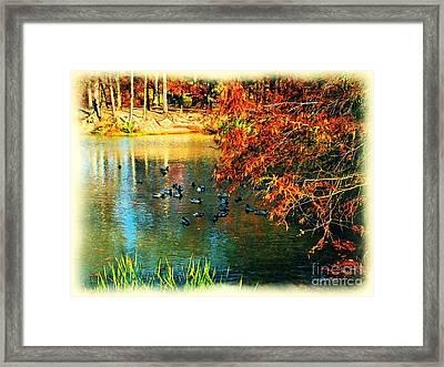 Ducks At Hinckley Lake Boathouse Framed Print by Joan  Minchak