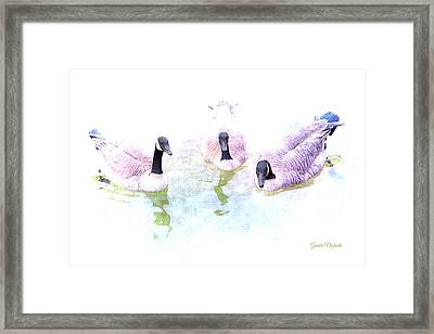 Framed Print featuring the photograph Ducks by Gunter Nezhoda