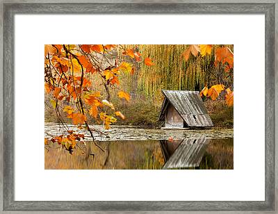 Duck's House Framed Print by Evgeni Dinev