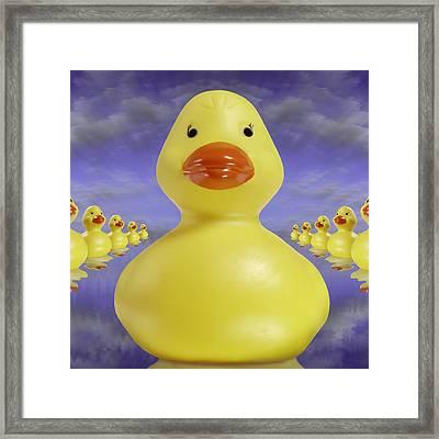 Ducks In A Row 3 Framed Print by Mike McGlothlen