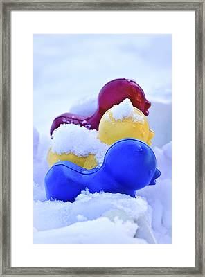 Ducks In A Row Framed Print by Christi Kraft
