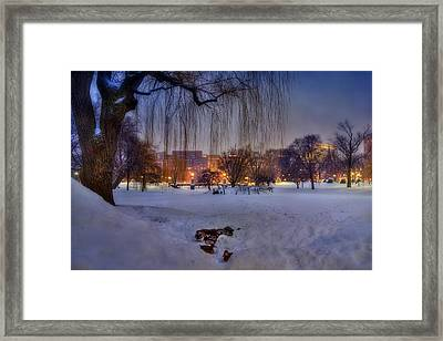 Ducks In Boston Public Garden In The Snow Framed Print