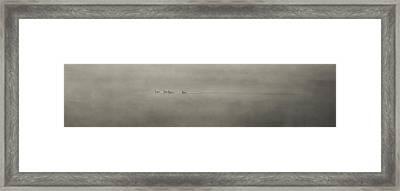 Ducks In The Mist Framed Print