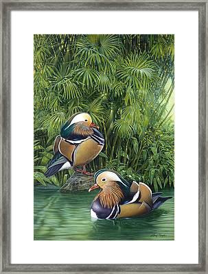 Ducks Framed Print by Larry Taugher