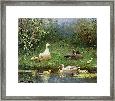 Ducks On A Riverbank Framed Print by David Adolph Constant Artz