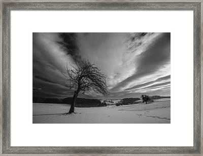 Duel Framed Print by Davorin Mance