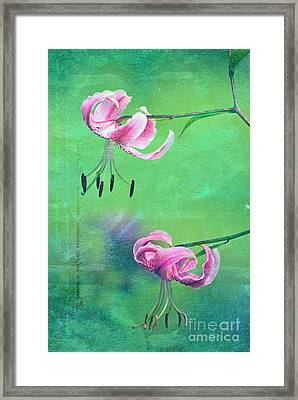Duet - 9t01b Framed Print by Variance Collections