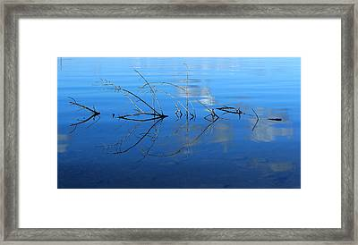 Duet Of The Branch And The Lake Framed Print by Rima Biswas
