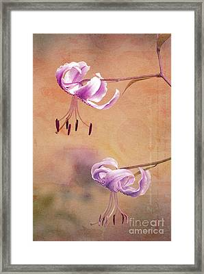 Duet - V05b Framed Print by Variance Collections