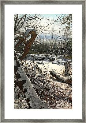Duffins Creek 3 Framed Print