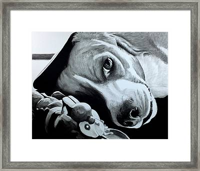 Duffy Framed Print by Scott Robinson