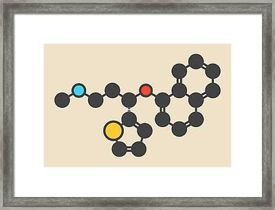 Duloxetine Antidepressant Drug Molecule Framed Print by Molekuul