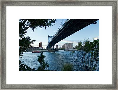 Framed Print featuring the photograph Dumbo One by Jose Oquendo