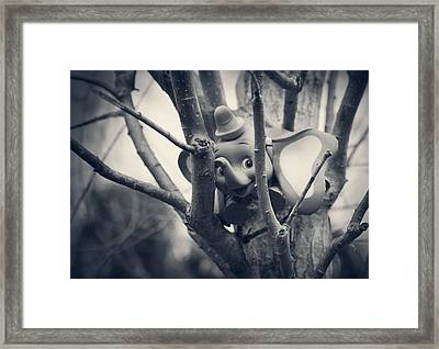 Dumbo Framed Print by Susie DeZarn