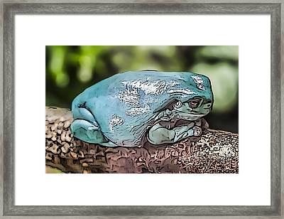 00014 Dumpy Tree Frog Framed Print by Photographic Art by Russel Ray Photos