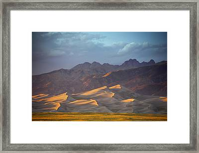 Dune Delight Framed Print