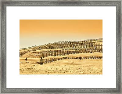Dune Fence Framed Print by Jay Wickens