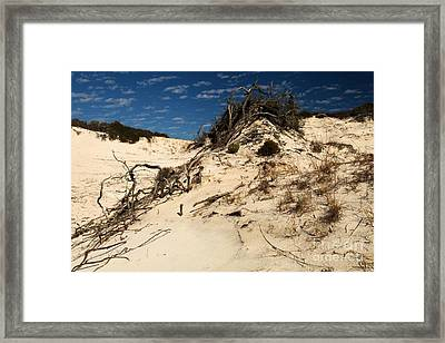 Dune Glue Framed Print by Adam Jewell