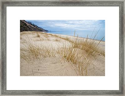 Dune Grass On Lake Michigan Framed Print