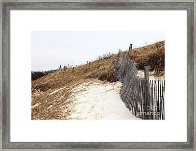 Dune Path Framed Print