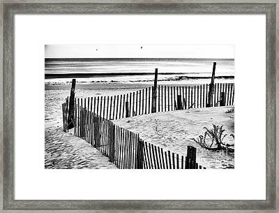 Dune Protection Framed Print