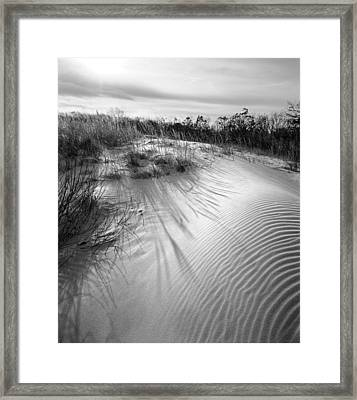 Dune Ripple Framed Print