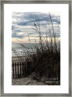 Dune View Framed Print
