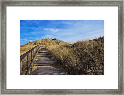 Dune With A View Framed Print by Angela Doelling AD DESIGN Photo and PhotoArt