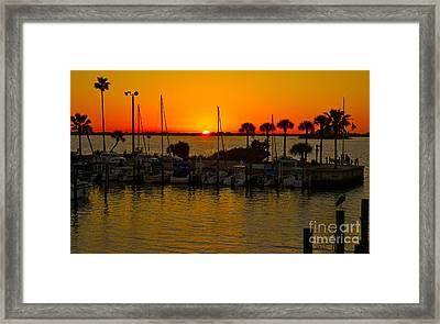 Dunedin Sunset Framed Print by Alice Mainville