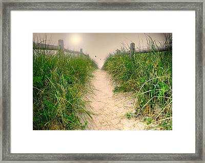 Dunes Catch Light Framed Print by Diana Angstadt