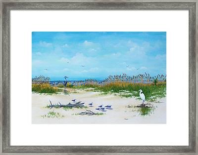 Dunes Denizens Framed Print