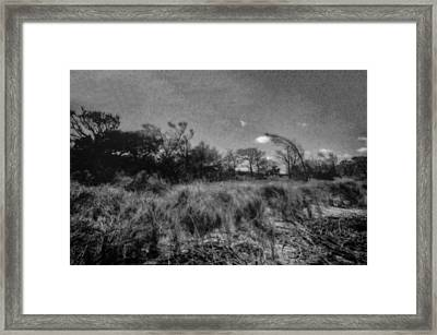 Dunes Leaving The Beach Framed Print