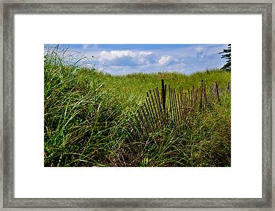 Dunes On Prince Edward Island Framed Print by Bonnie Fink