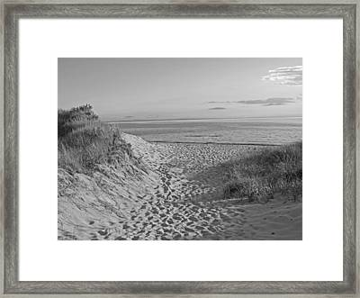 Dunes Walk Framed Print by Barbara McDevitt