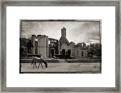 Dungeness Framed Print by Dawn Currie